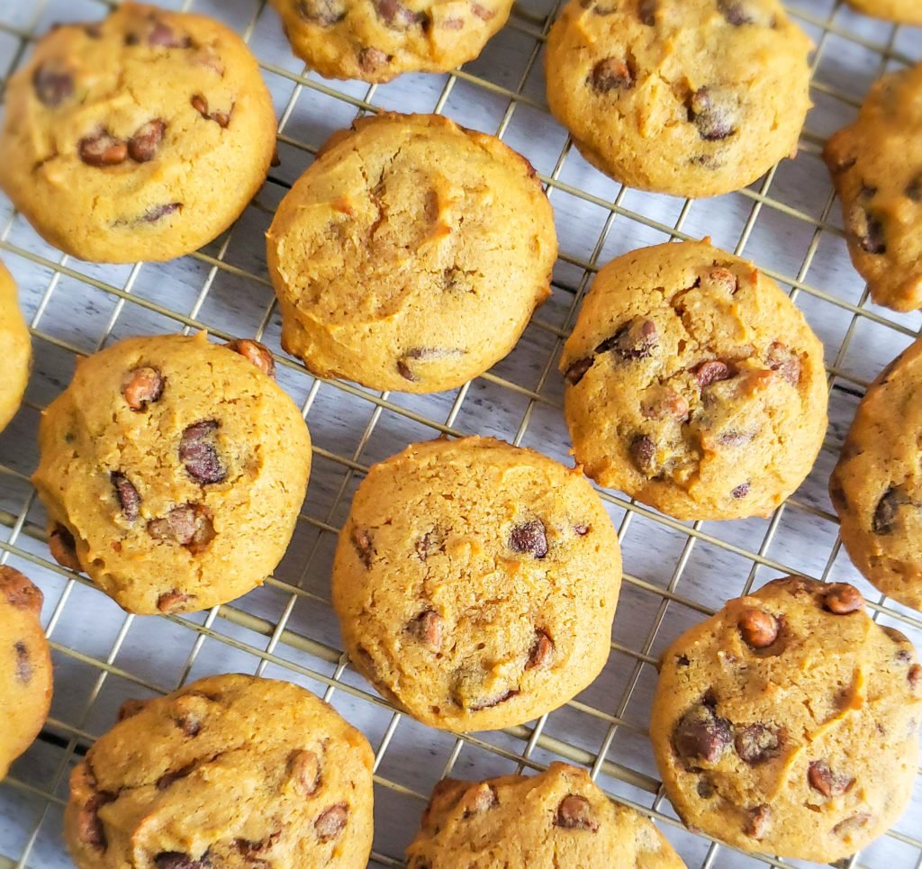easy pumpkin chocolate chip cookie recipe