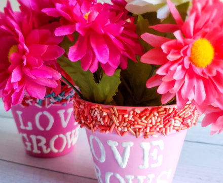 Sprinkle Flower Pots