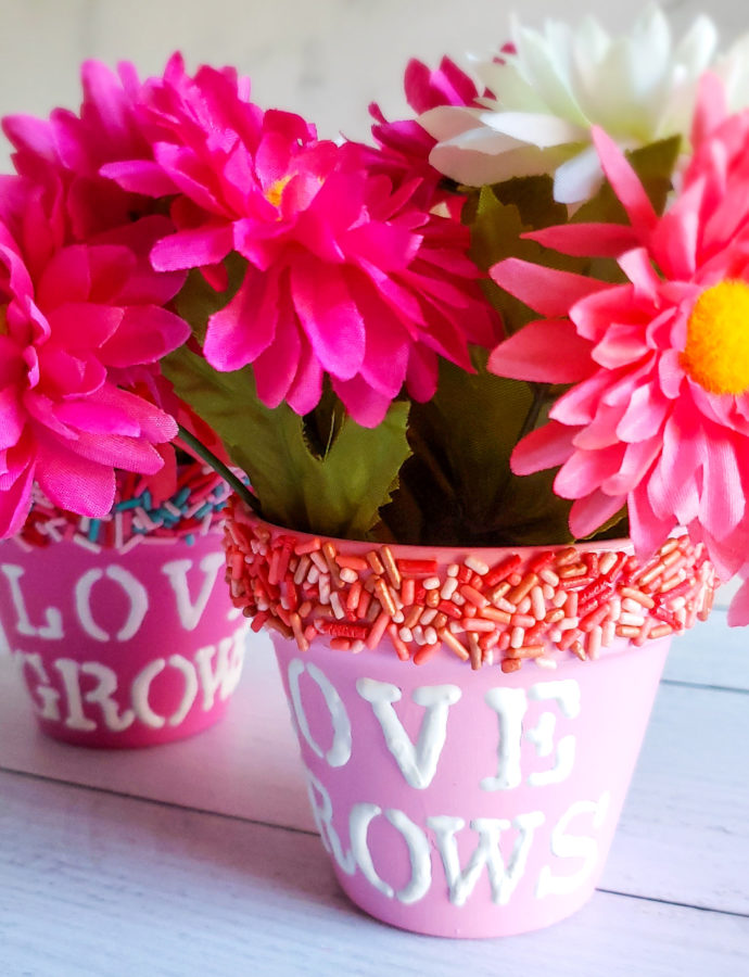 Sprinkle Flower Pots